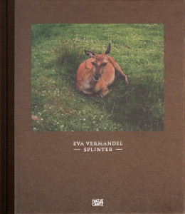 eva-vermandel-splinter